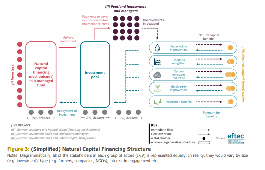 Simplified Natural Capital financing structure, Eftec.
