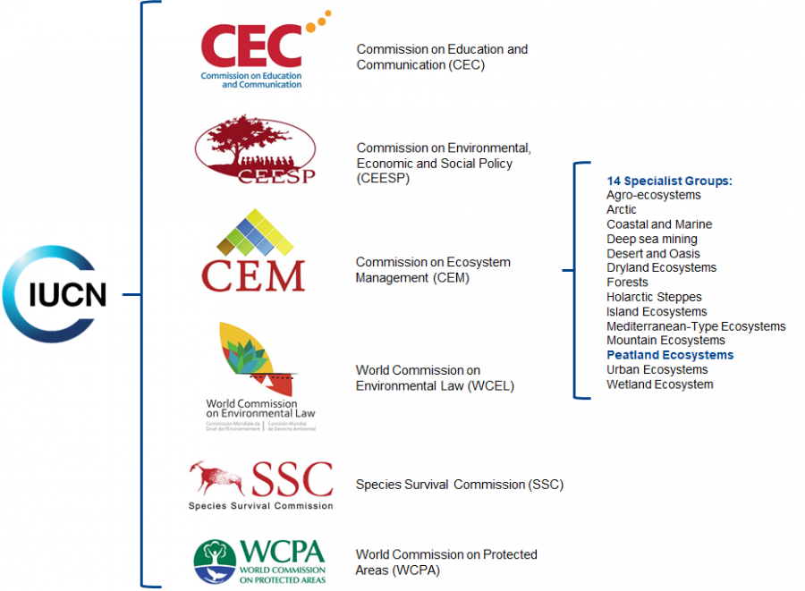 Organisational structure of IUCN's Commission of Ecosystem Management
