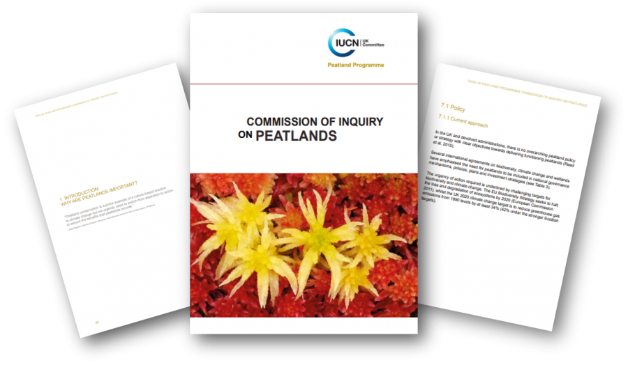 Commission of Inquiry report