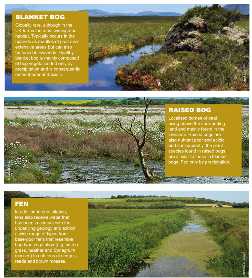 Three broad peatland types in the UK