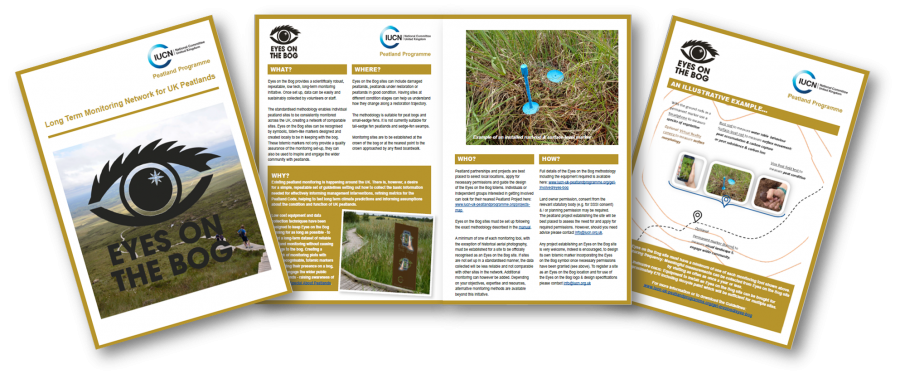 Eyes on the Bog leaflet