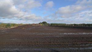 Peatland milled for horticulture