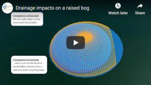 Drainage impacts on a raised bog video