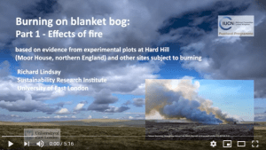 Effects of fire on blanket bog video