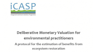 Deliberative Monetary Valuation for environmental practioners, iCASP