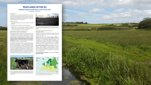 Peatlands in the EU post CAP