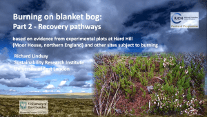 Burning on Blanket Bogs - Part 2: Recovery pathways