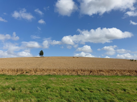 Nitrogen Futures landscape photo