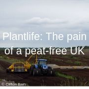 Plantlife: The pain of a peat-free UK