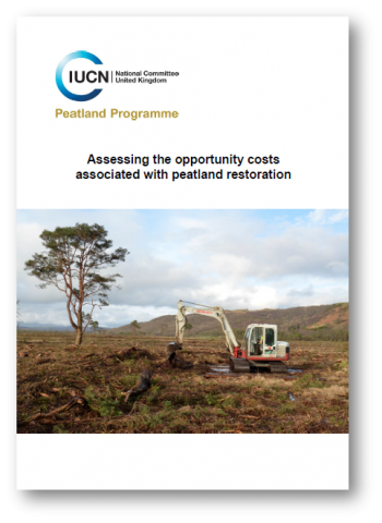 Briefing: Assessing opportunity costs of peatland restoration