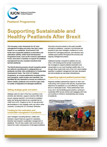 Supporting sustainable & healthy peatlands after Brexit briefing