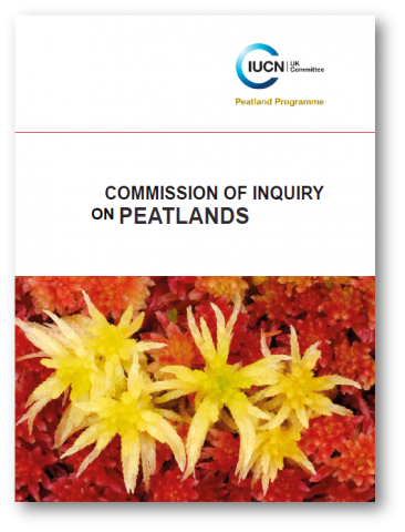 Commission of Inquiry 2011 full report