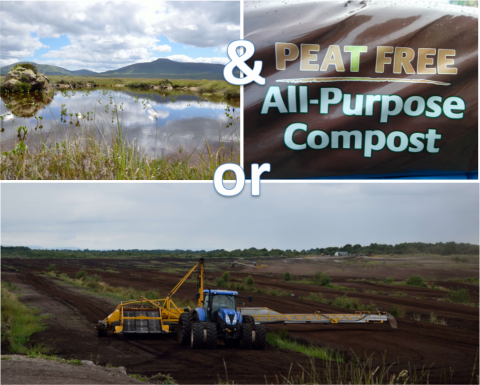 The benefits of peat-free products far outweight the cost of peat extraction.