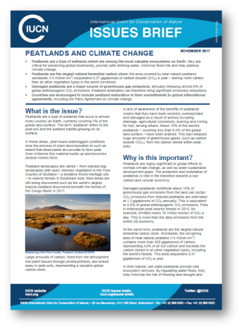 IUCN Climate change & peatlands briefing