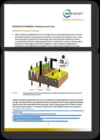 IUCN UK Peatland Programme Peatlands and trees position statement, 2020.