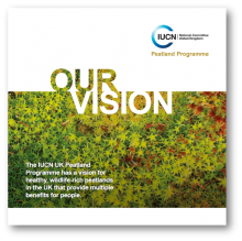 Our Vision Leaflet
