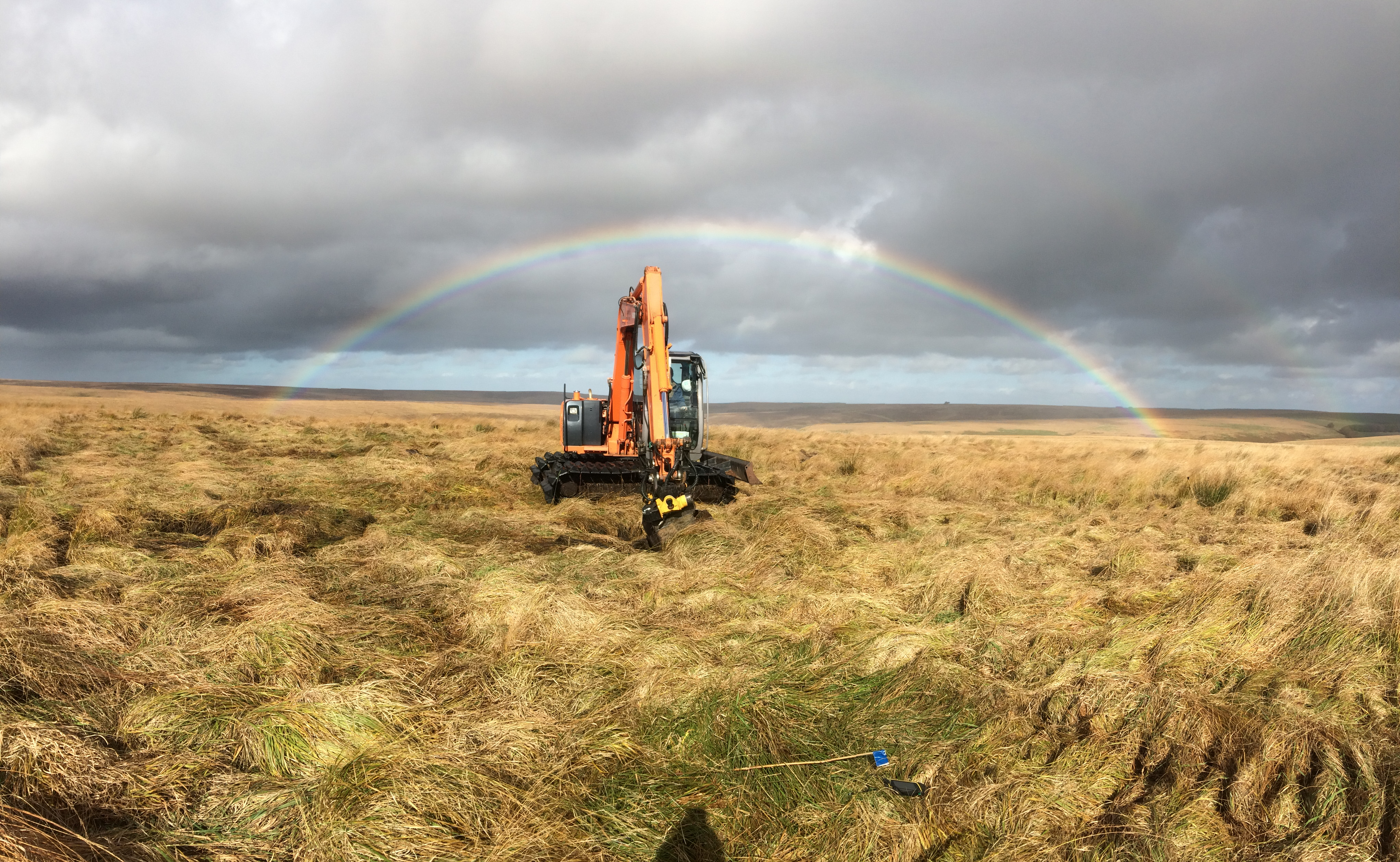 Restoration on the Warren- Credit Exmoor Mires Partnership