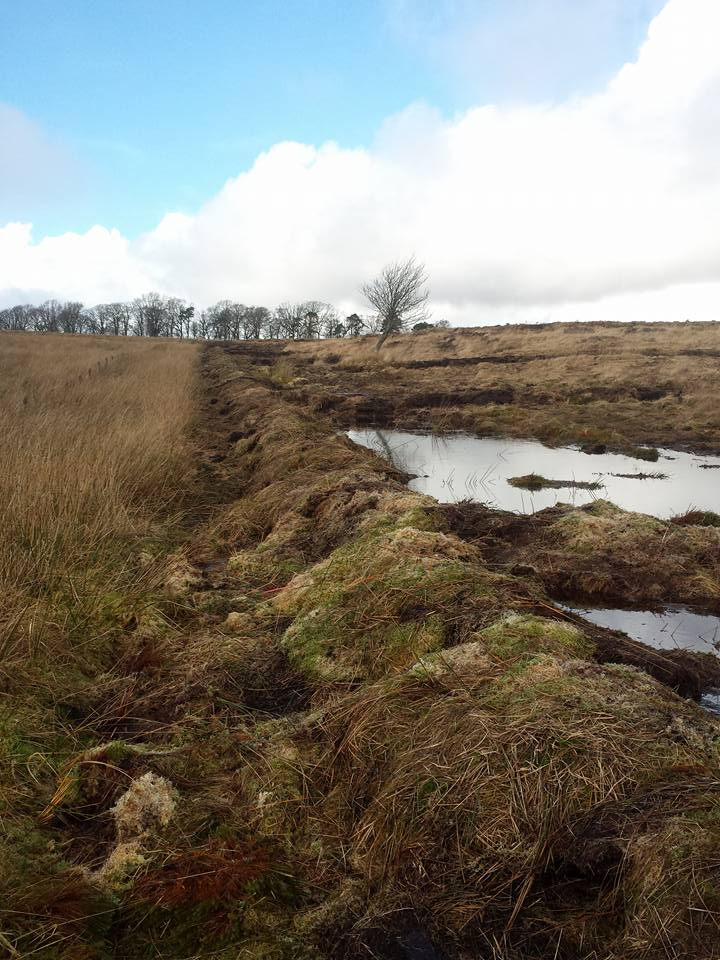 Deep trench bund at Low Moss
