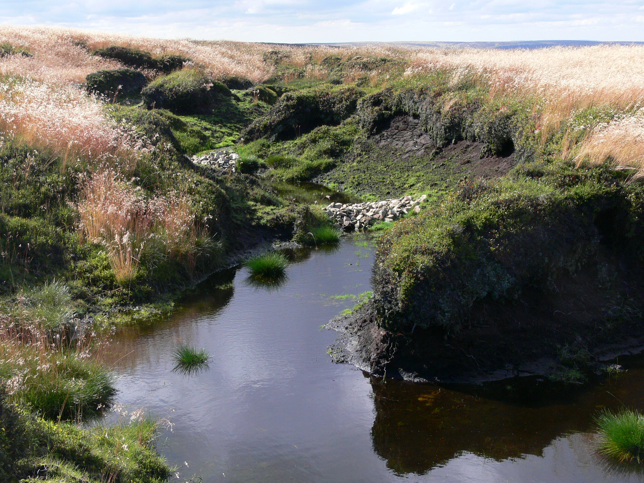 Stone dams at Bleaklow - Credit Penny Anderson