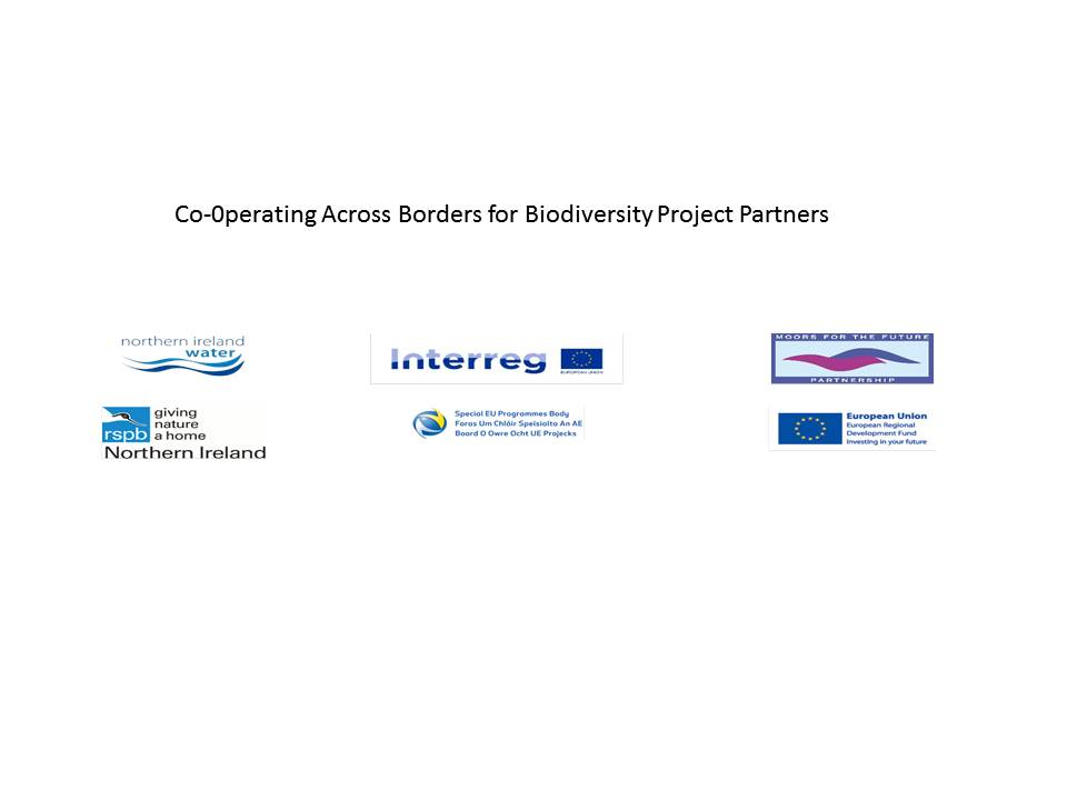 CABB Project Partners
